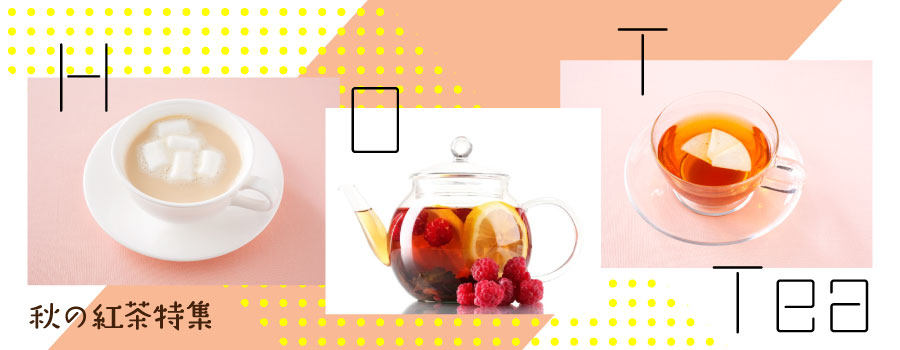秋の紅茶特集